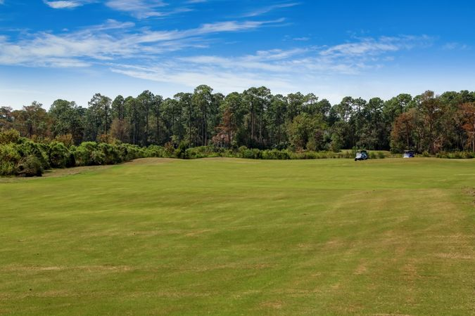 Osprey Cove Golf Club - Real Estate 11