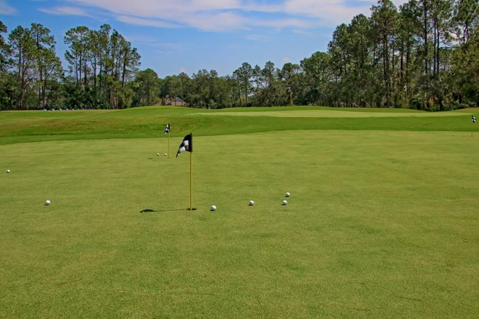 Osprey Cove Golf Club - Homes for Sale 8
