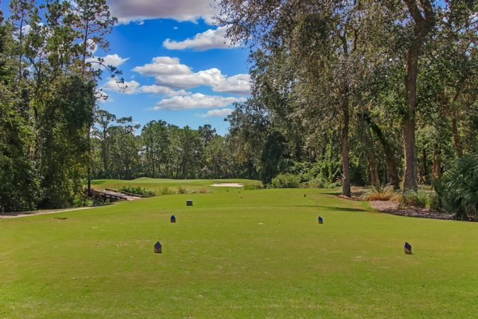 Fleming Island Plantation - Homes for Sale 16