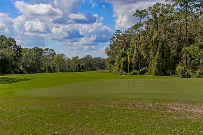Fleming Island Plantation - Homes for Sale 18