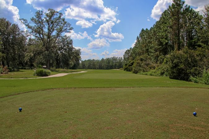 Eagle Landing at Oakleaf Plantation - Homes for Sale 20