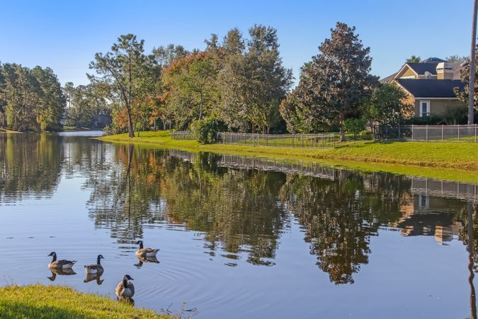 Jacksonville Golf & Country Club - Real Estate 17