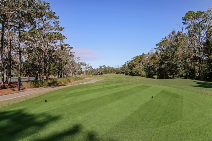 Sawgrass Players Club - Homes for Sale 10