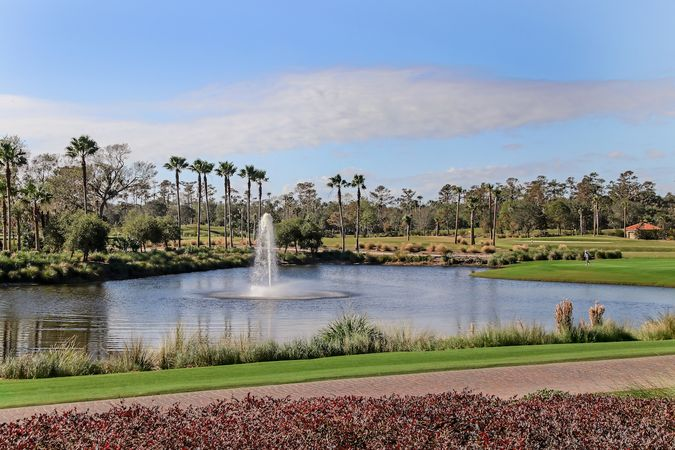 Sawgrass Players Club - Homes for Sale 6