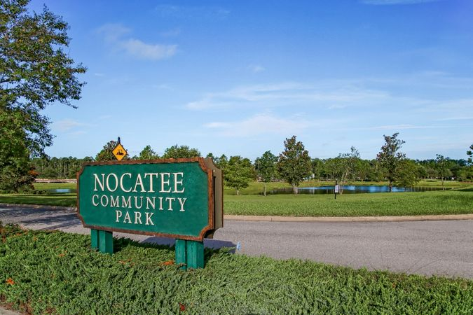 Nocatee - Homes for Sale 16