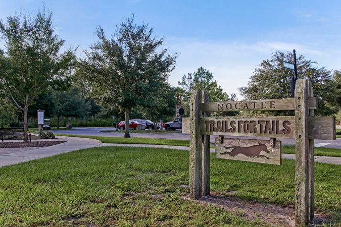 Nocatee - Homes for Sale 18
