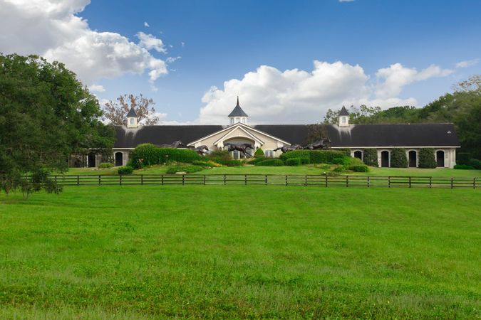 Golden Ocala Golf and Equestrian Club - Real Estate 13