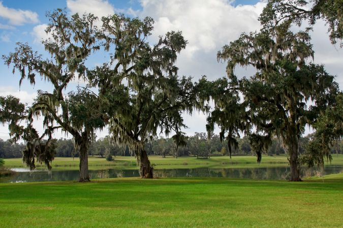 Golden Ocala Golf and Equestrian Club - Real Estate 7