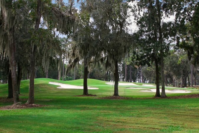Golden Ocala Golf and Equestrian Club - Homes for Sale 4