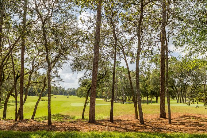 Victoria Hills Golf Club - Homes for Sale 6