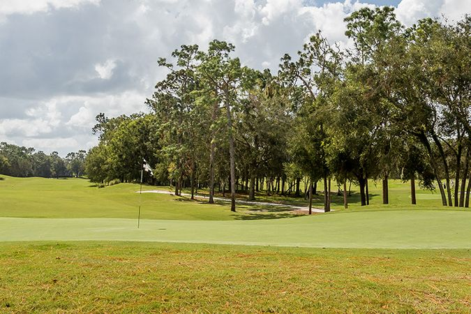 Victoria Hills Golf Club - Real Estate 1