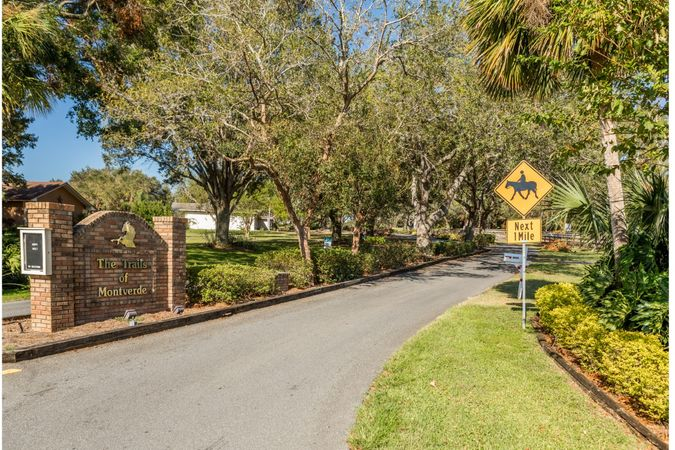 Montverde - Homes for Sale 14