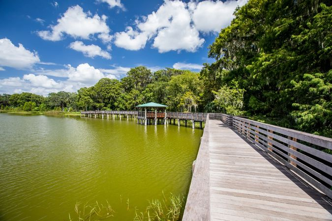 Mount Dora - Homes for Sale 18