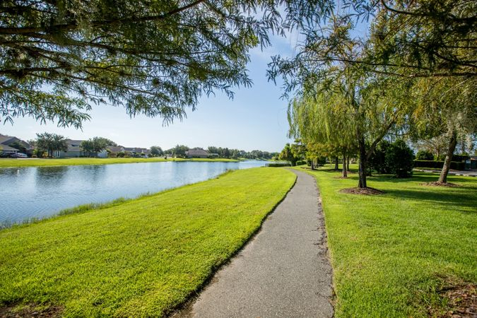 Lakes of Mount Dora - Homes for Sale 12
