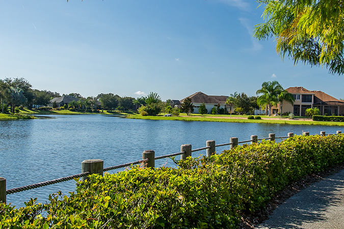 Lakes of Mount Dora - Real Estate 1
