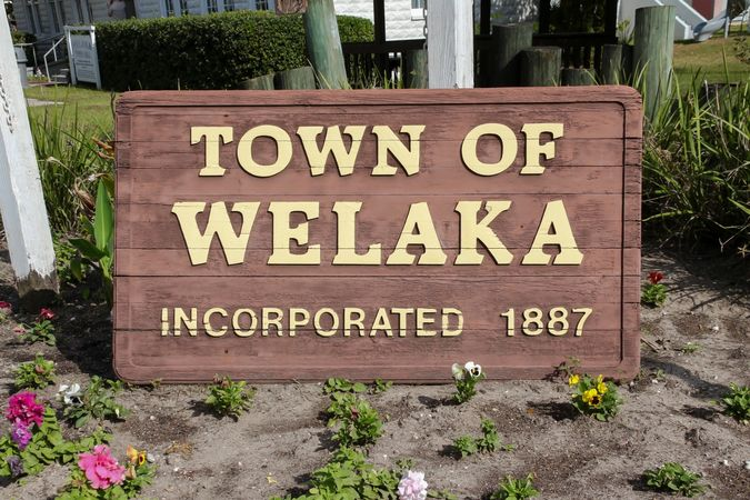 Welaka - Homes for Sale 14