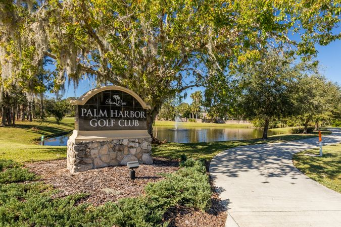 Palm Harbor - Homes for Sale 4
