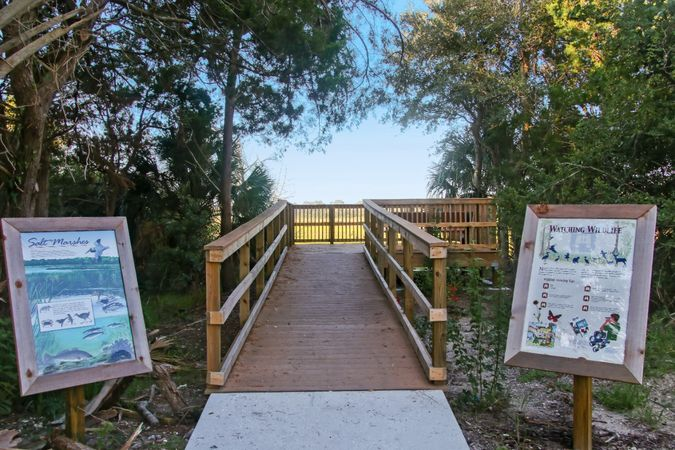 Amelia Island and Fernandina - Homes for Sale 8