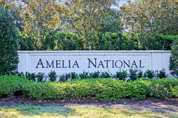 Amelia National - Homes for Sale 2