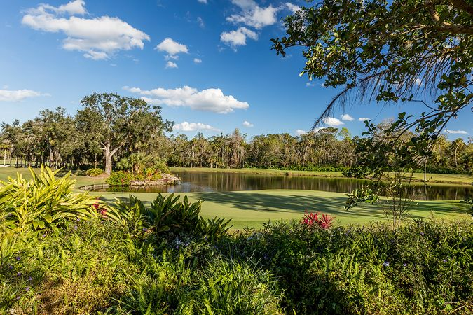 Sugar Mill - Homes for Sale 2
