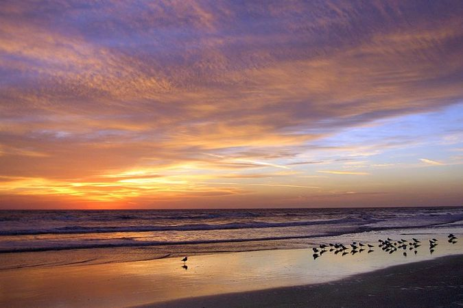 605 Ocean Palm Way - Photo 30