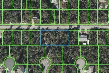 265 LINCOLN ROAD NE LAKE PLACID, FL 33852 - Image 1