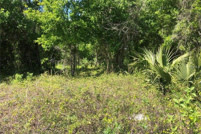 Lot 51 Bear Paw Lane Deland, FL 32720