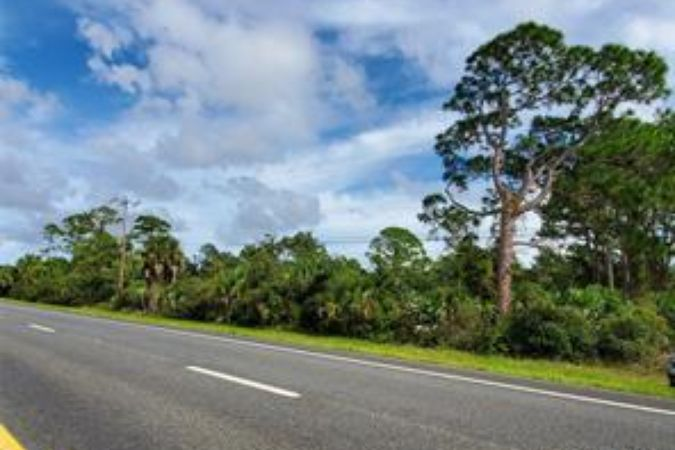 0 Us Highway #1 & County Line Ditch Rd Mims, FL 32754