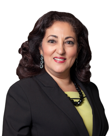 Ann Shahin, Real Estate Agent