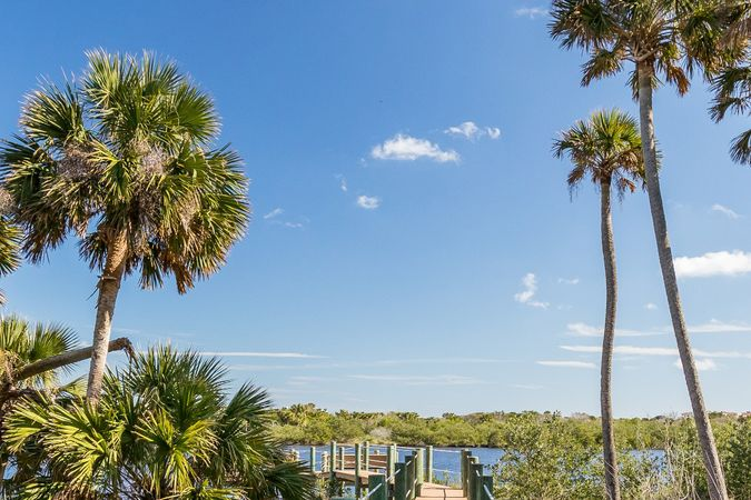 Palm Coast Plantation - Real Estate 1