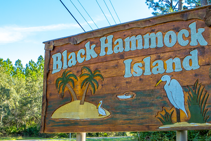 Black Hammock Island  - Real Estate 1