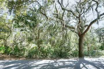 Lot 168 Royal Tern Drive Fernandina Beach, FL 32034 - Image 1